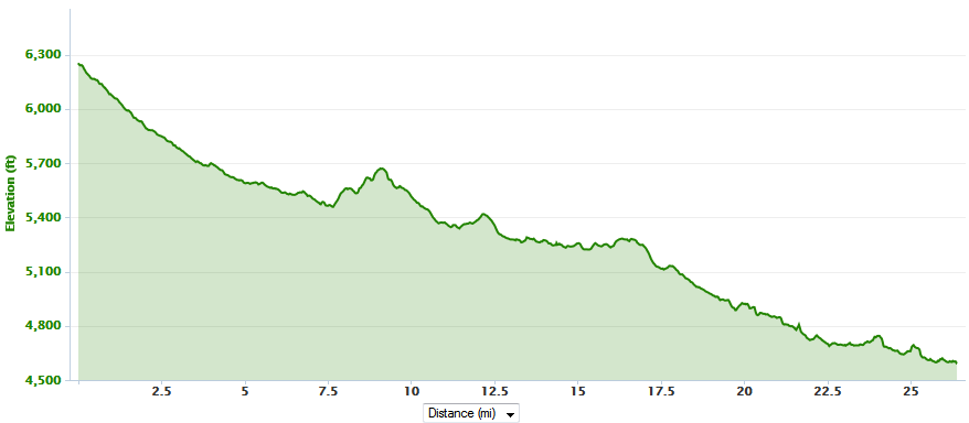 Don't be deceived, the downhills are tough on the legs and there were several uphill climbs
